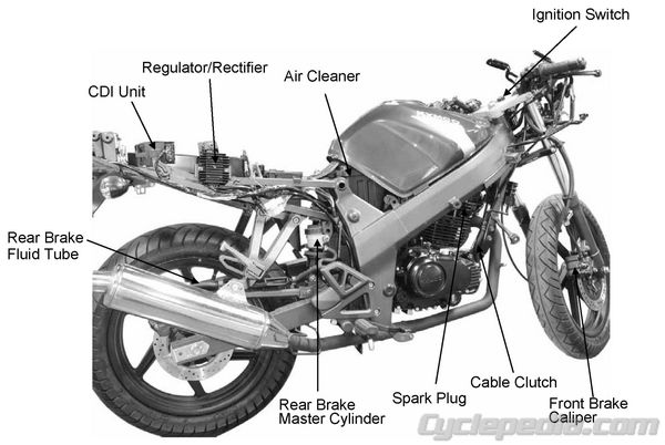 Quannon300dpi 14 kymco quannon 125 150 online service manual cyclepedia Basic Motorcycle Diagram at love-stories.co